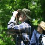 Наблюдение за птицами в Национальном парке
